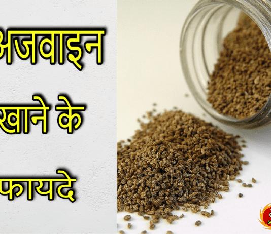 carom seeds in hindi