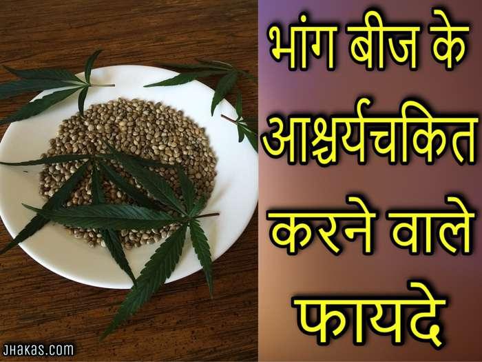 Benefits Of Hemp Seeds In Hindi À¤ À¤— À¤¬ À¤œ À¤• À¤« À¤¯à¤¦