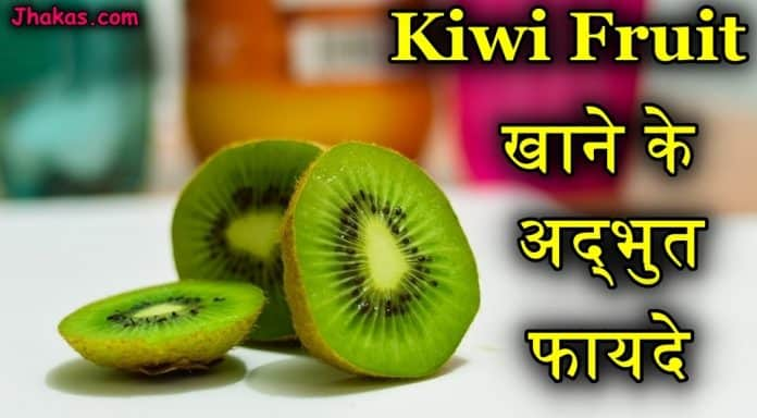 kiwi fruit in hindi