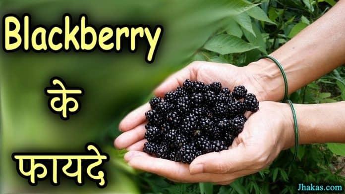 blackberry in hindi