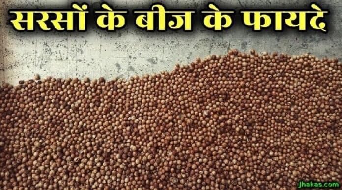 mustard seeds in hindi