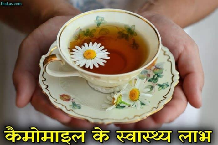 chamomile in hindi