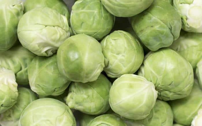 cabbage varities in hindi
