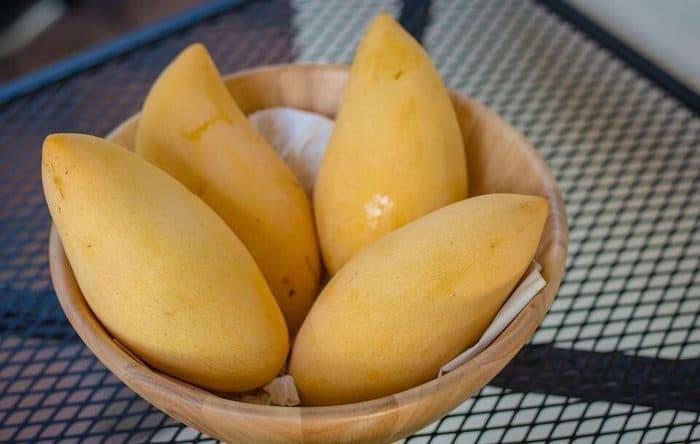 mango ke fayde